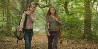 Harry Potter: 10 Reasons Why Hermione & Ginny Aren't Real Friends