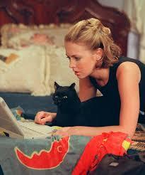 Image result for salem cat